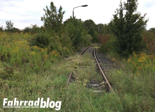 Eisenbahnstrecke und Gleise am Geiseltalsee