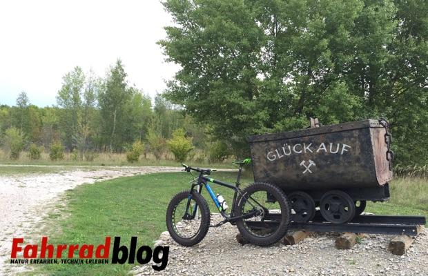 Geiseltalsee mit dem Mountainbike