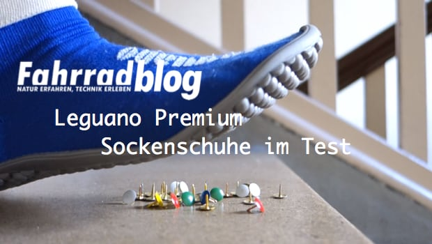 Leguano Premium blau Test